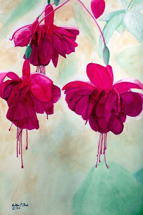 """Fuchsia Dreams"" - Will Clark Art"