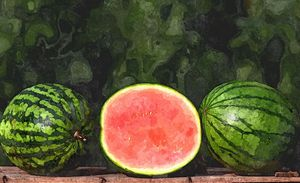 WATERMELONS - Will Clark Art