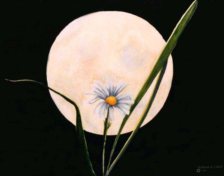 Summer Moon - Will Clark Art