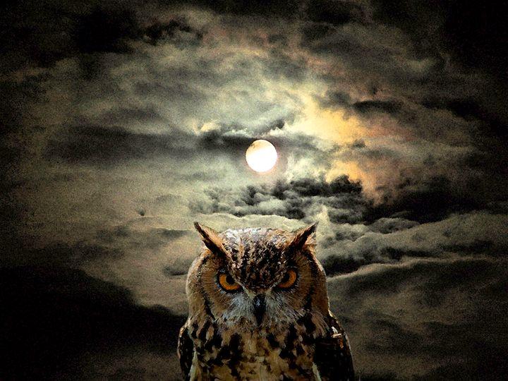 Night Watch - Will Clark Art