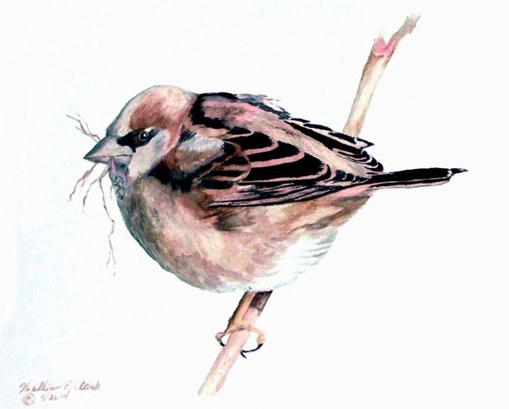 Nesting - Will Clark Art