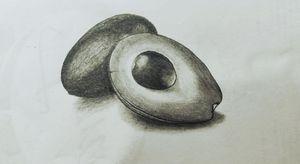 Pencil Sketch - Avocado