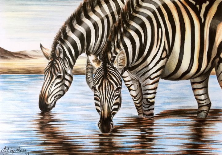 Zebras at the waterhole - Art By Three