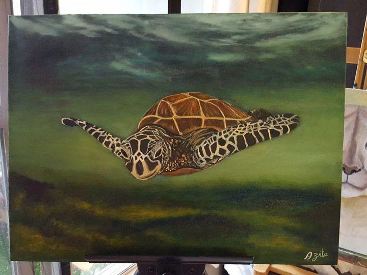Turtle - Azi Hess Art