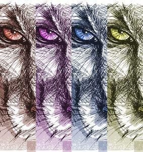 four face tiger