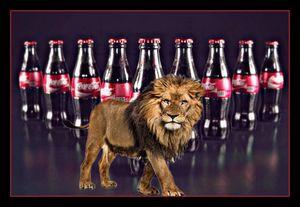 Coca lion