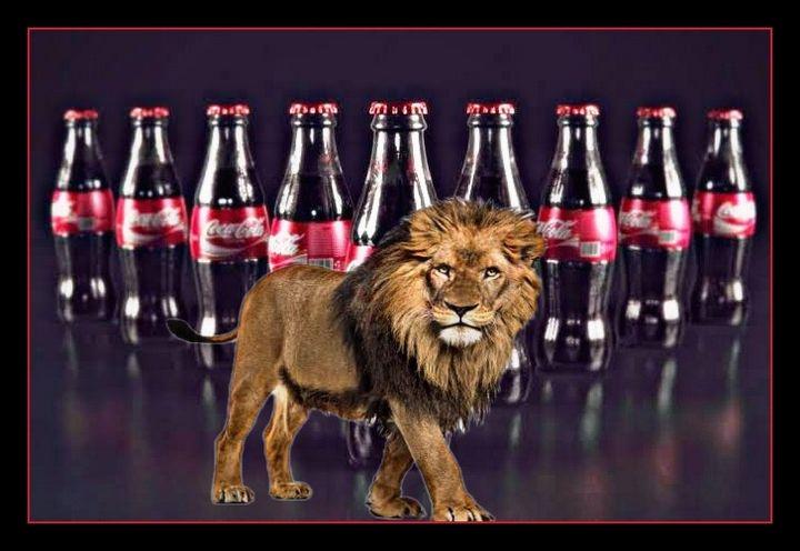 Coca lion - ObranssART