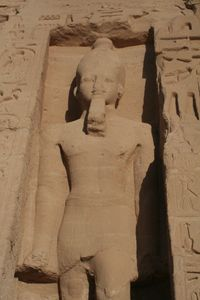Ramesses The Great - sheryl chapman photography