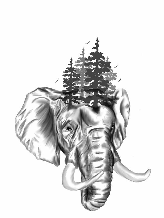 An elephant never forgets - Bonnie