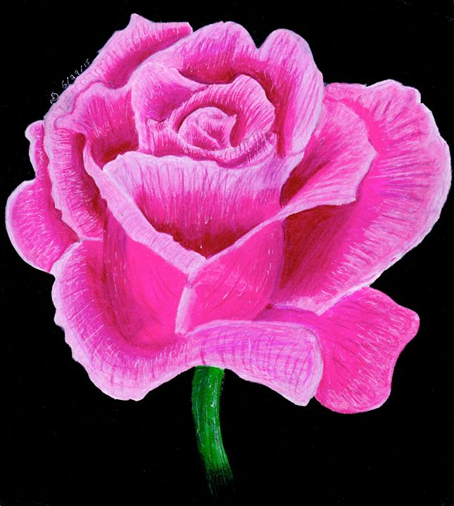 Pink Flower - Ben Foster's Portfolio