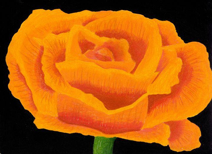 Orange Flower - Ben Foster's Portfolio