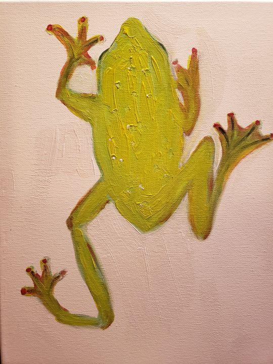 Tree frog - Ron Skovron