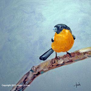 WINTER SONG - John Horne