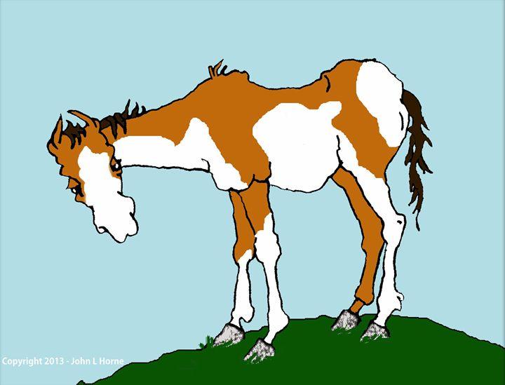 FOR SALE, KIDS HORSE - John Horne