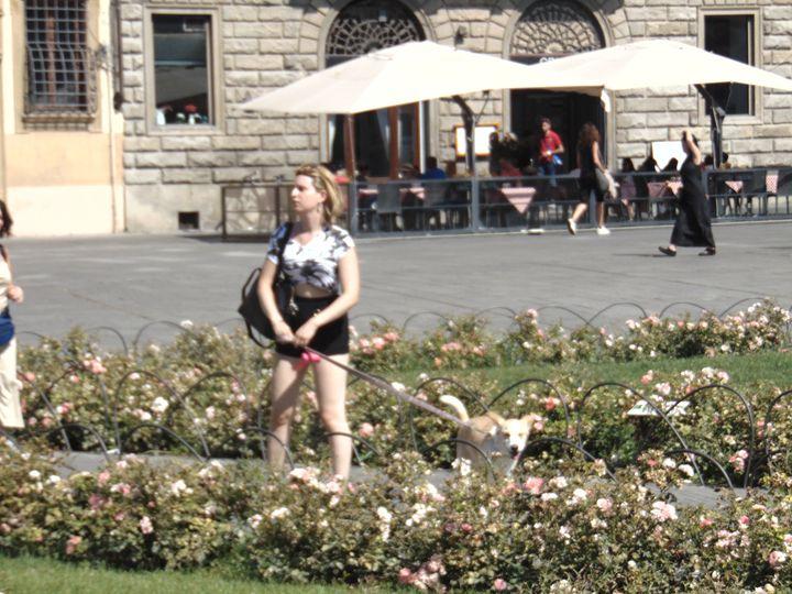 under florence sun - Selima