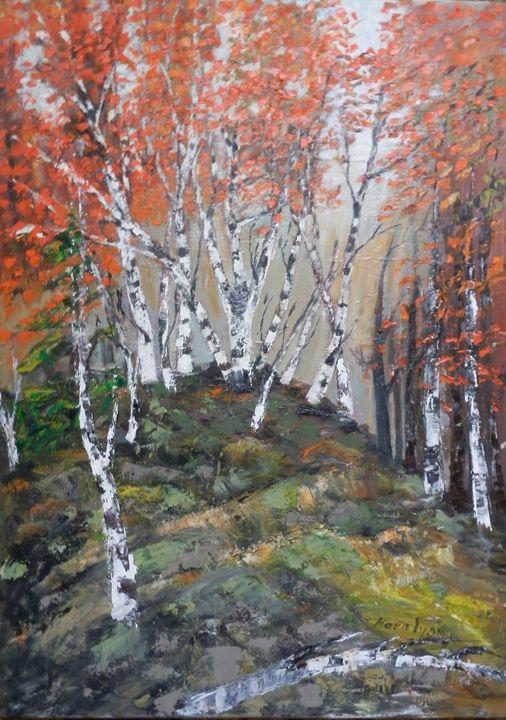 Birches on forest edge - Maria Karalyos