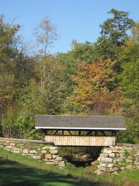 Cart Bridge - ROC Impressions