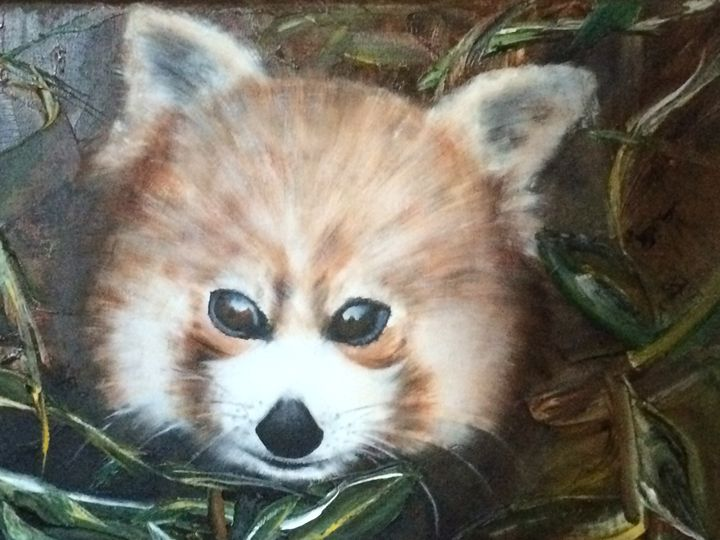Red Panda - ARLEQUIN