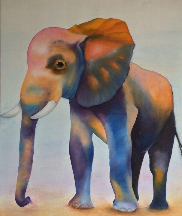 Elephant - ARLEQUIN