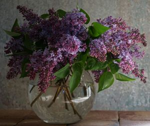 Lovely Lilacs - LDM Photographie