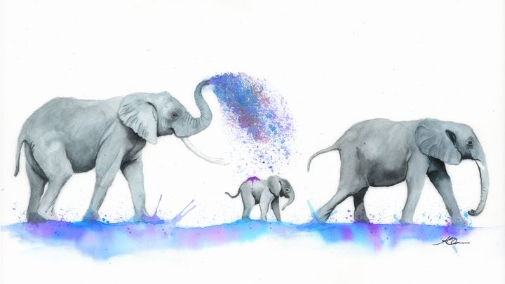 Elephants Watercolour Painting - Kieran O'Connor