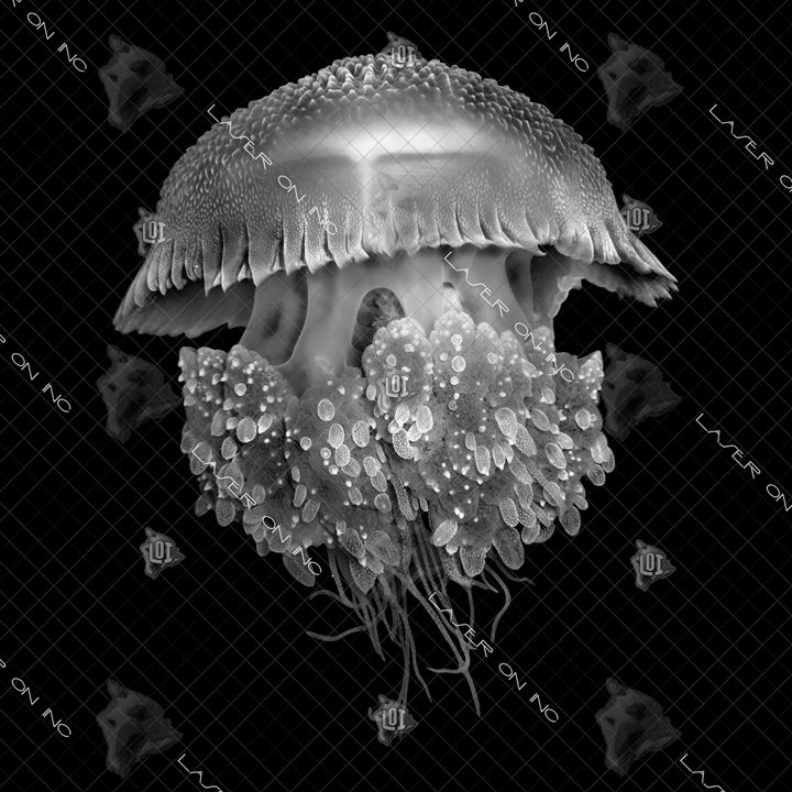 jellyfish2-12in - Laser On Inc
