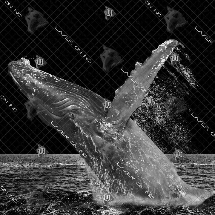 breaching-12x12 - Laser On Inc