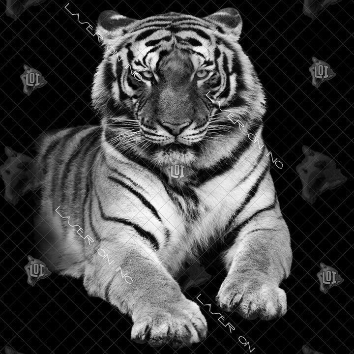 tiger-12in - Laser On Inc