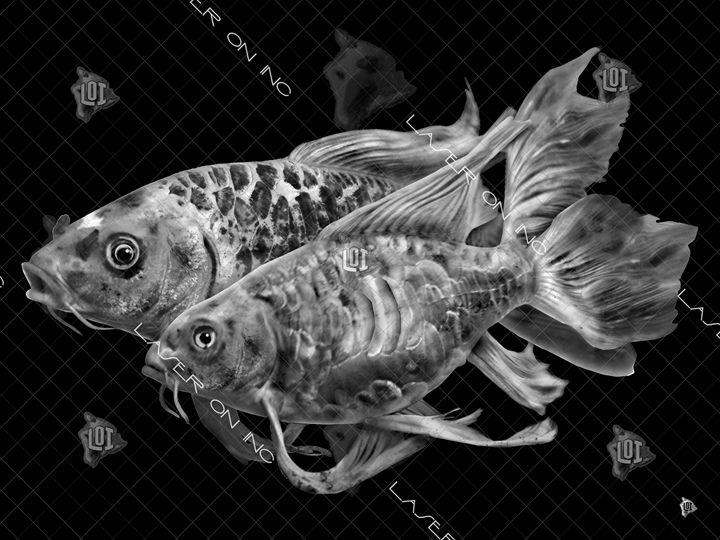 fish6933-sd - Laser On Inc