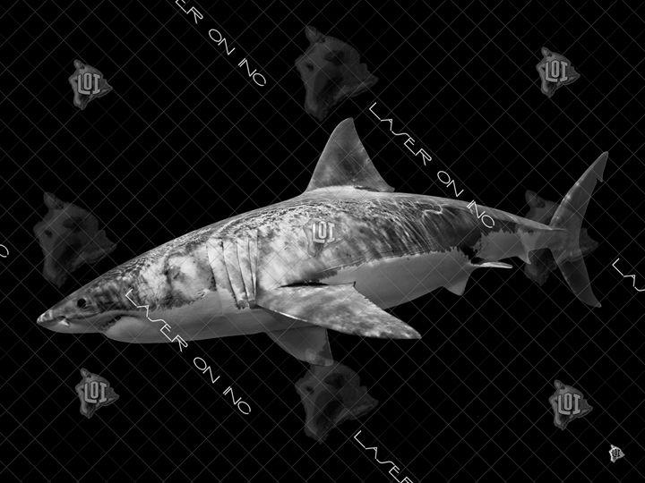 tiger-shark2-sd - Laser On Inc