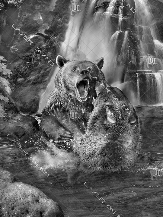 vertical-bears-sd - Laser On Inc