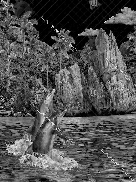 vertical-dolphin-lagoon2-sd - Laser On Inc