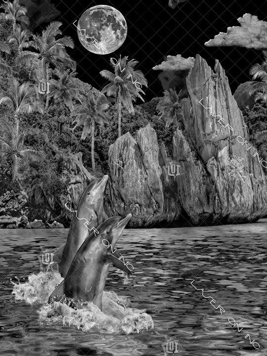 vertical-dolphin-lagoon3-sd - Laser On Inc