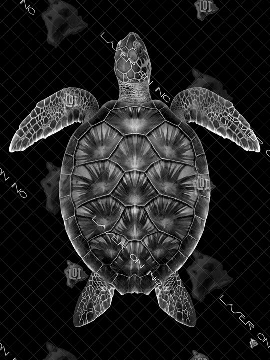vertical-honu1-0086-sd - Laser On Inc