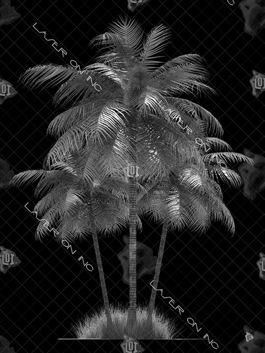 vertical-palm2852-sd- - Laser On Inc