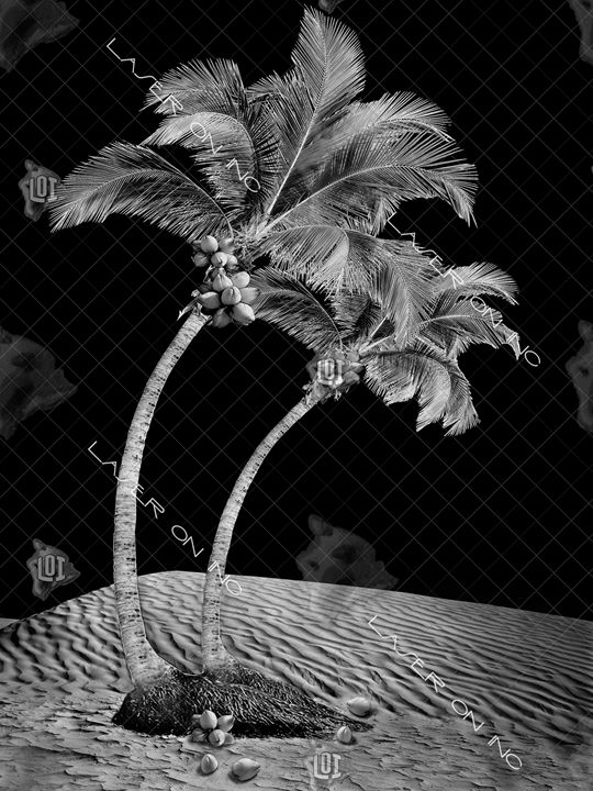 vertical-palms1-sd- - Laser On Inc
