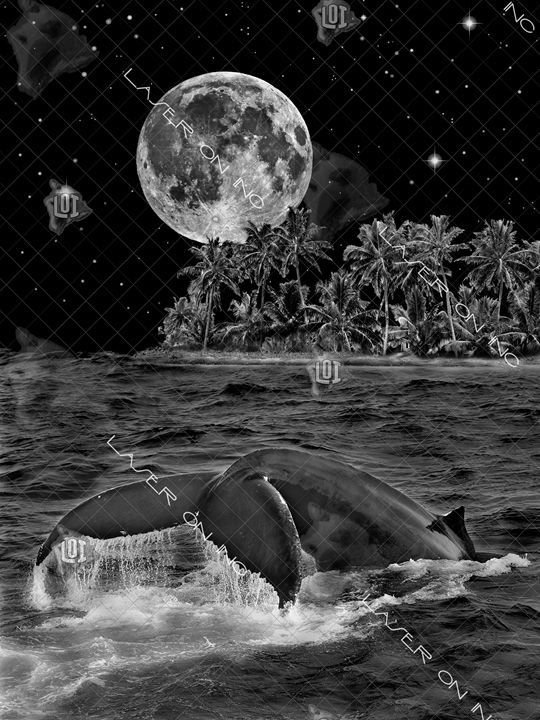 vertical-whale-moon-sd - Laser On Inc