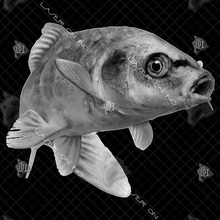 fish3617-12x12 - Laser On Inc