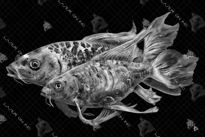 fish6933-24 - Laser On Inc
