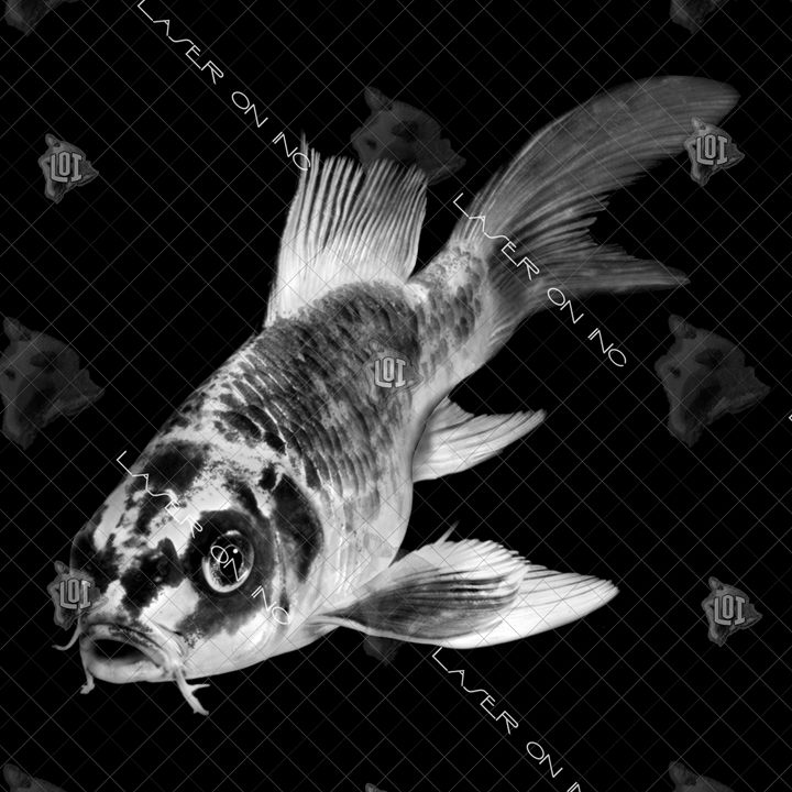 fish4309-12x12 - Laser On Inc