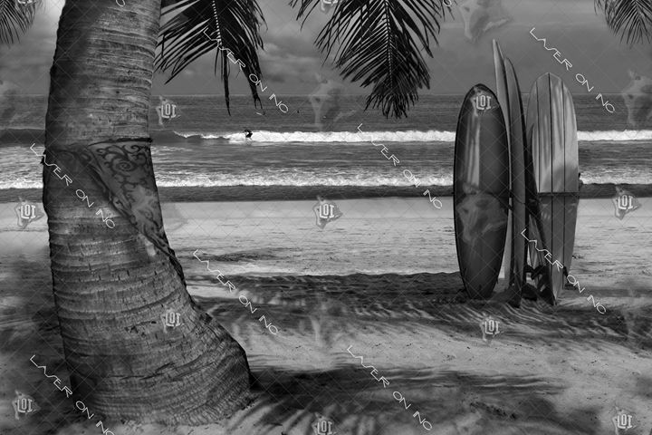 surf-beach-sd - Laser On Inc