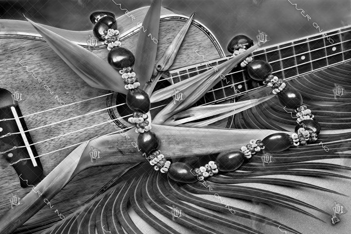ukulele1-24 - Laser On Inc
