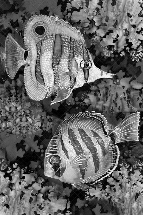 vertical-batikfish-24 - Laser On Inc