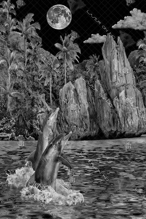 vertical-dolphin-lagoon-3-24 - Laser On Inc