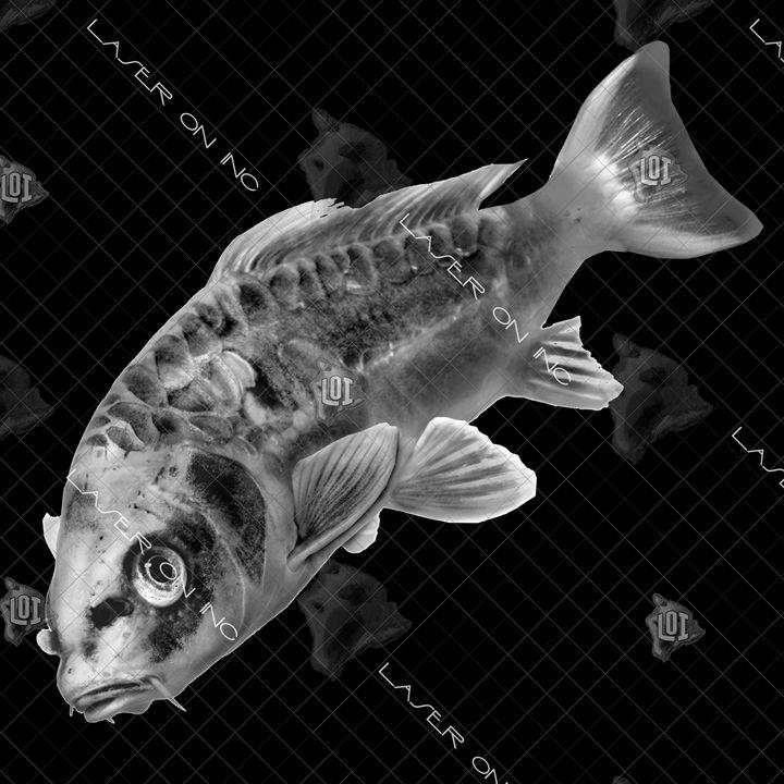 fish9650b-diag-12x12 - Laser On Inc