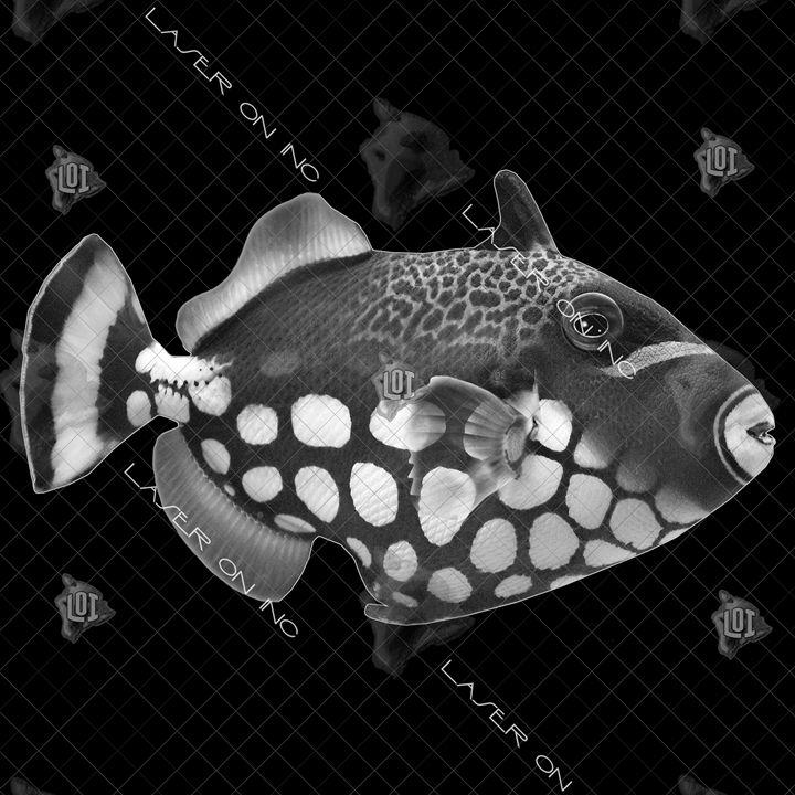 fish9735-12x12 - Laser On Inc