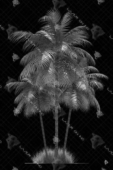 vertical-palm2852-24- - Laser On Inc