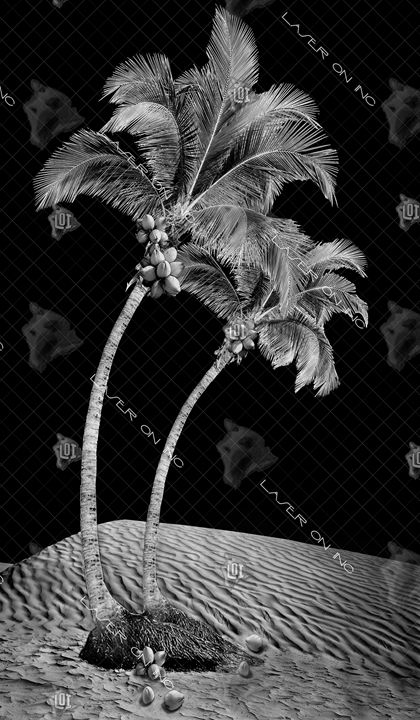 vertical-palms1-24- - Laser On Inc