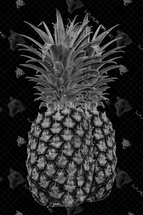 vertical-pineapples-24 - Laser On Inc