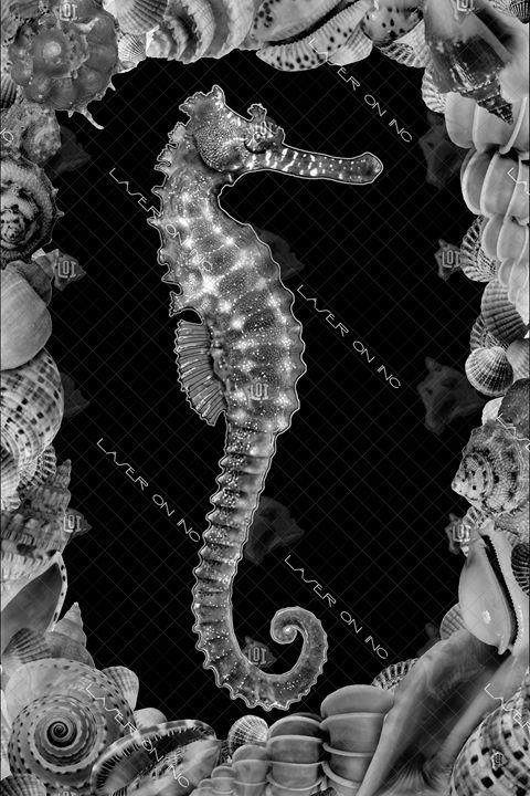 vertical-seahorse-fram-24 - Laser On Inc